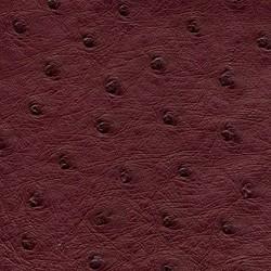 Ostrich - Raspberry