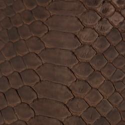 Millennium Python - Brown