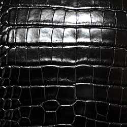 Millennium Alligator - Black