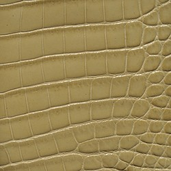 Alligator Millenium - Beige